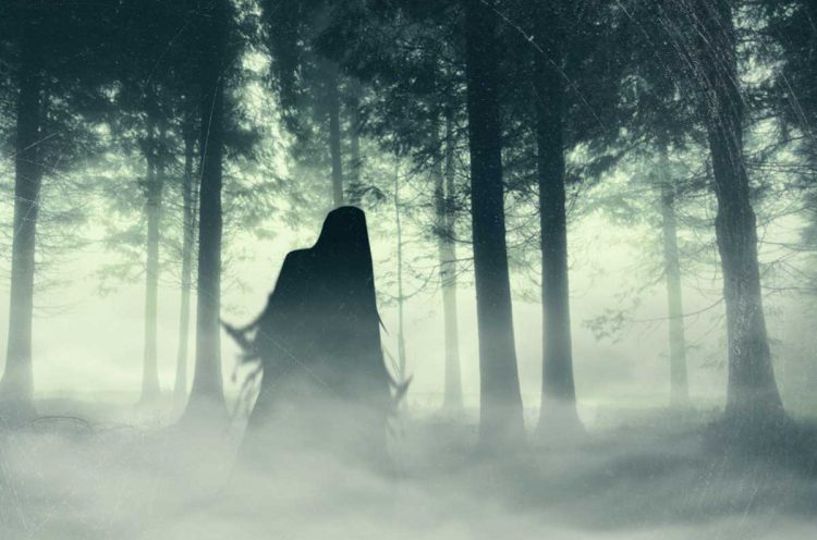 The Most Haunted Forest In The World